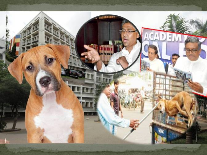 Cruel and inhuman treatment of dogs at  University of Sri Jayewardenepura, Sri Lanka – Sagarica Rajakarunanayake