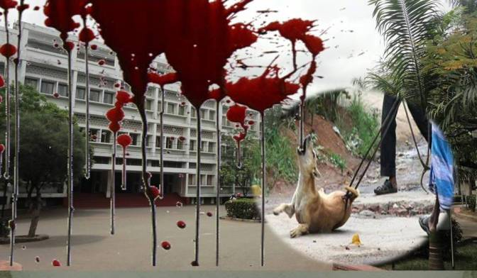 Dog Holocaust at University of Sri Jayewardenepura – Dr. Prasanna Cooray